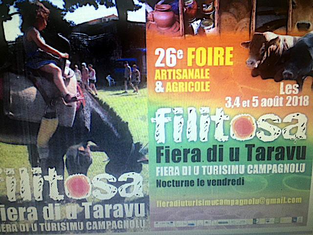 Sartenais-Valinco-Ornano : L'ATC en séminaire à « a fiera di u Taravu »