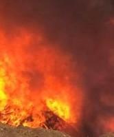 Départ de feu à Ghisonaccia