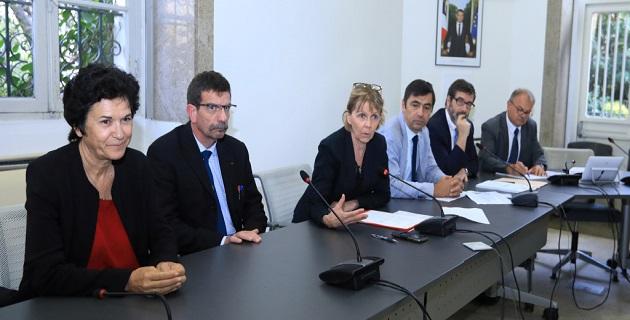 L'Etat veut une vision transparente de la stratégie insulaire de lutte contre la Xylella fastidiosa
