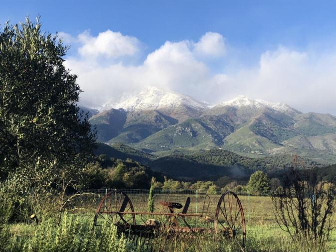 Chaîne du Cardu et de la Latiniccia de la plaine du Boziu, ce mardi matin à 8 heures (Moreloni)