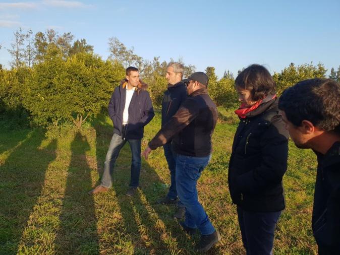 Jeunes Agriculteurs de Haute-Corse : Le soutien des élus nationaux