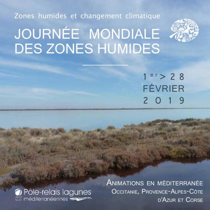 Changement climatique : Les journées mondiales des zones humides reviennent en Corse