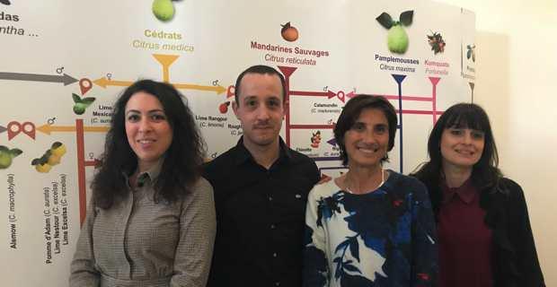 Laetitia Ferraci, directrice de l'office de tourisme de l'Oriente, Thomas Gaudin, conseiller technique, représentant la Chambre de Commerce de Haute-Corse (CCI2B), Hélène Santoni, directrice de l'office de tourisme de Fium'Orbu Castellu, et Maryline Renoso, directrice de l'office de tourisme de Costa Verde.