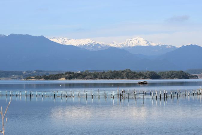 La photo du jour : l'étang d'Urbino et le Monte d'Oro capturés au petit matin