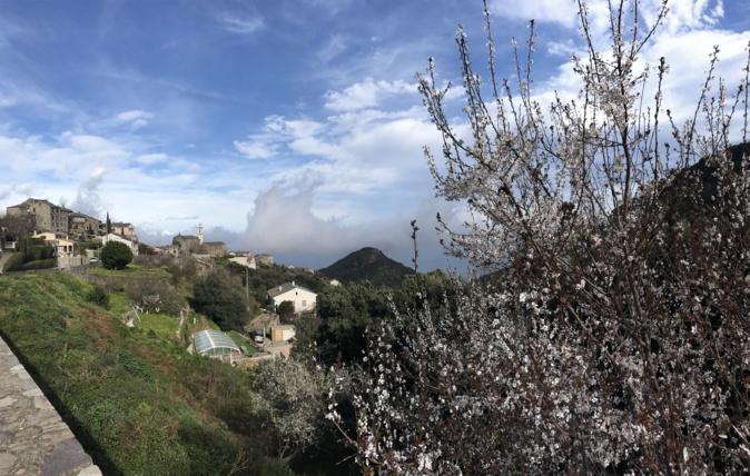La photo du jour : San Martinu di Lota dans la brume