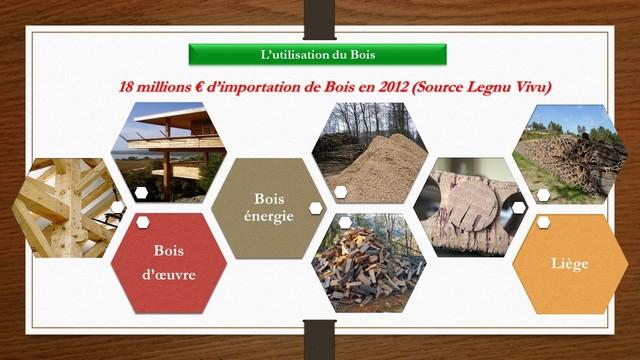 Pioggiola  : Un plan de dynamisation de la filière bois de Corse