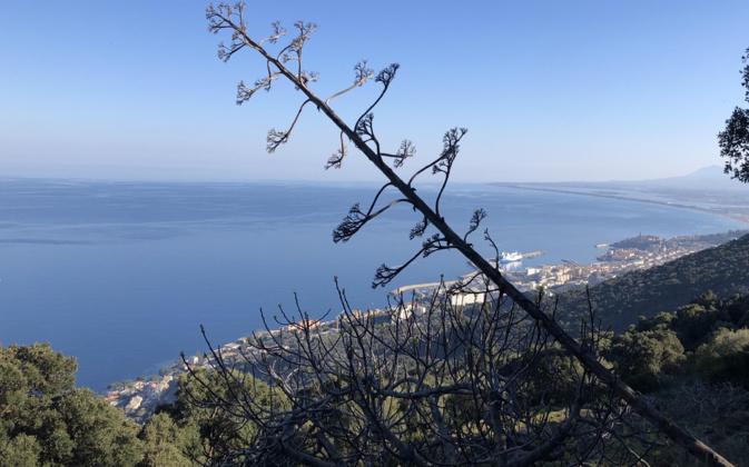 L'image du jour : Balade sur les hauteurs de Bastia