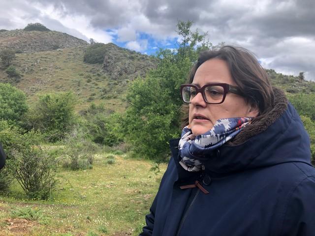 Caroline Tharot, Procureure de la République