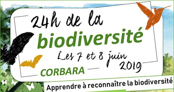Les 7 et 8 juin Corbara célèbre les 24H de la Biodiversité