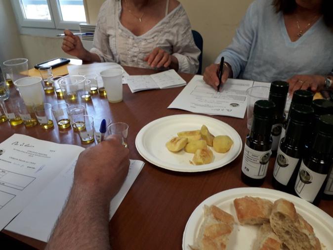 Les lauréats du XIe concours régional des huiles d'olive de Corse en AOP désignés à Corte