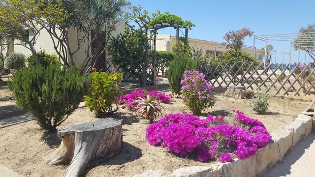 Chambre et jardin Hôtel Escale Plage Algajola