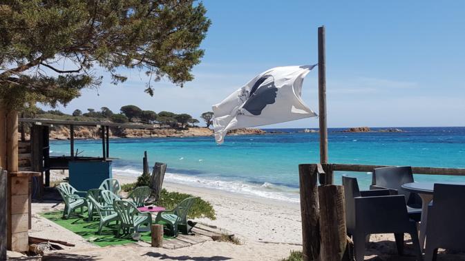 La plage d'Asciaghju à Porto-Vecchio (Patricia Borghi)