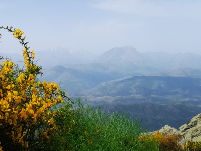Monte Padru e Capu Biancu (Françoise Geronimi)