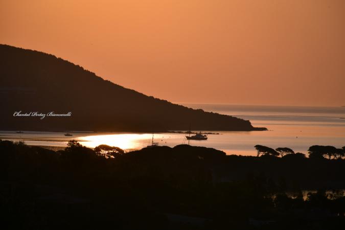 Un lever de soleil tout en douceur sur la baie de Palombaggia. (Chantal Portaz-Biancarelli)