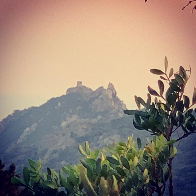 La photo du jour : la tour et le lion de Roccapina