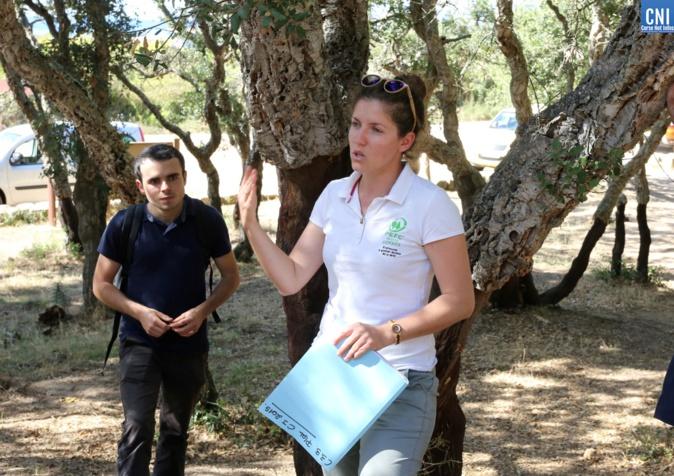 Emilie Bernardi est la seule employée de la structure Corse du PEFC - Photo- Michel Luccioni