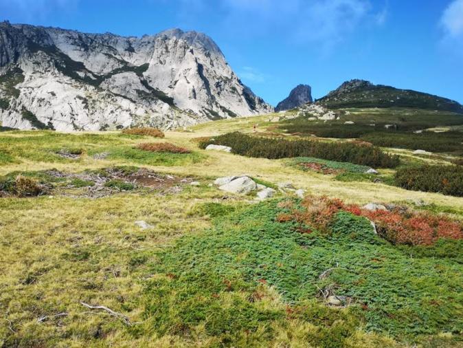 Le Monte Renosu (Françoise Geronimi)