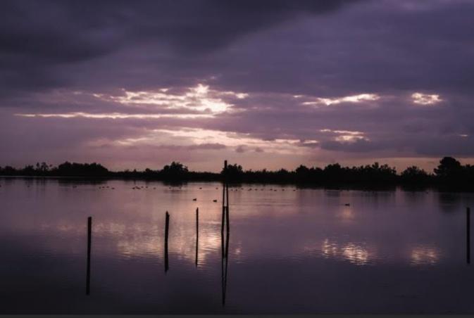 La photo du jour : lever de soleil sur l'étang du Palu