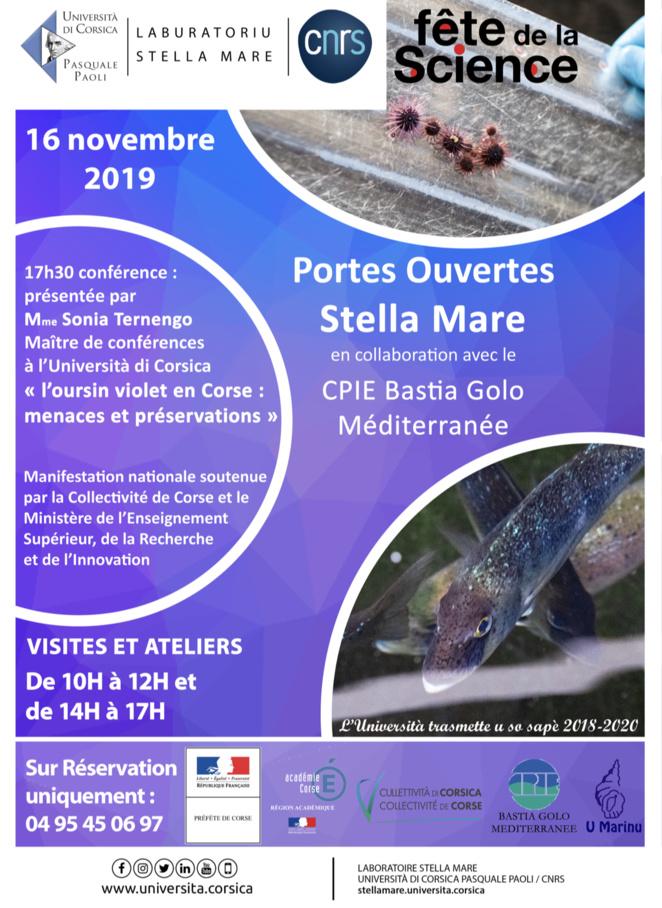 Stella Mare ouvre ses portes ce 16 novembre