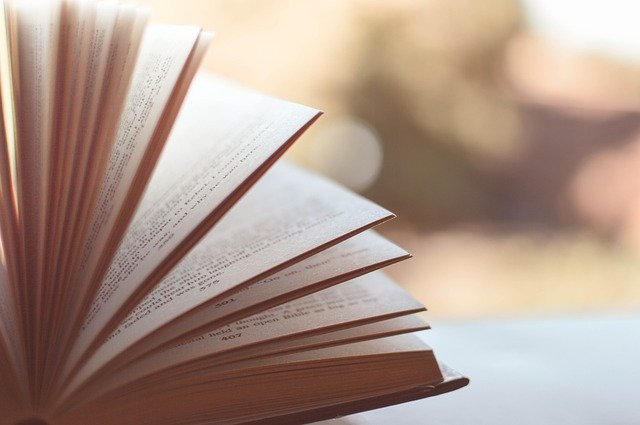 """La 8e édition des """"Petits champions de la lecture"""" est lancée en Corse"""