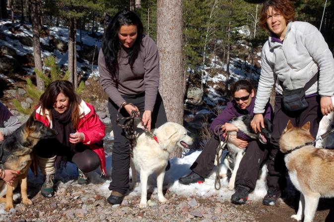 Muriel Finidori propose une cani-rando au col de Vizzavona