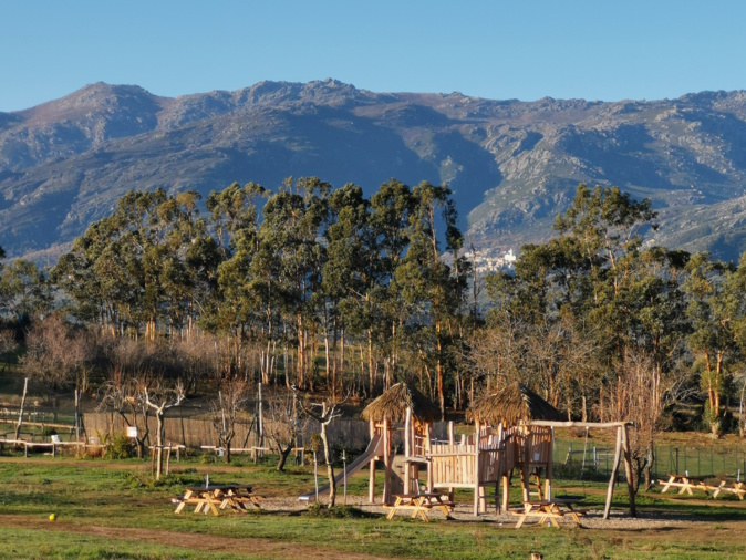 De nouveaux arrivants au Corsica Zoo à Olmeta-di-Tuda