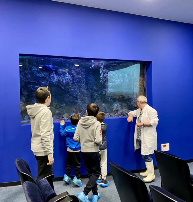 """Journée portes ouvertes à Stella Mare : visite d'un """"hôtel 5 étoiles pour poissons"""""""
