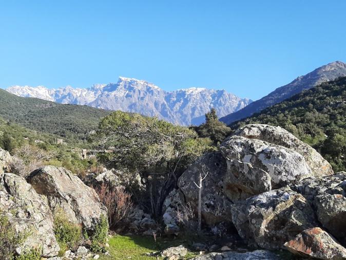 La photo du jour : A Paglia Orba vue de la vallée du Fangu