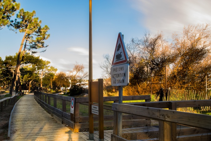 La promenade piétonne de la pinède de Calvi désormais interdite aux usagers