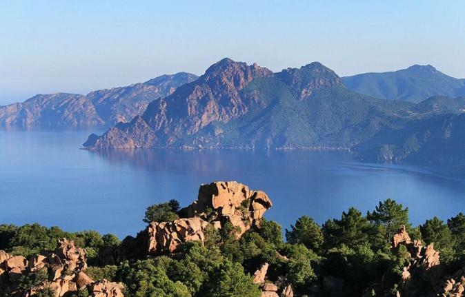 Julien Paolini : « Nous allons créer un muséum d'histoire naturelle pour la Corse »