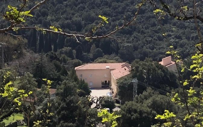 """Covid-19 - L'appel à l'aide du centre  SSR """"La Palmola"""" d'Oletta"""