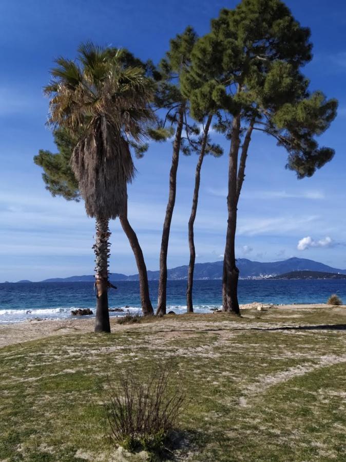 La photo du jour : la plage d'argent de Coti-Chiavari