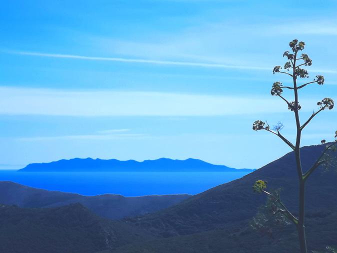 L'isula di Capraia suspesa trà celu è mare. ( Ghjuvanni Viva)