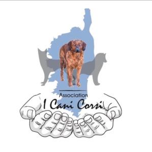 Aleria : l'association I Cani Corsi lance un appel aux dons pour soutenir le refuge