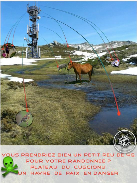 Global Earth Keeper lance une pétition contre l'installation des antennes 4 G sur le plateau du Cuscionu