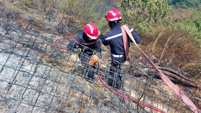 Incendie à Ajaccio : une dizaine d'hectares parcourus  à Saint-Antoine