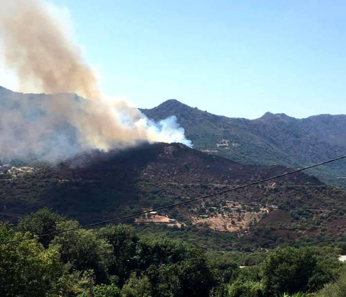 Nouveau départ de feu à Muro : 2 hectares détruits