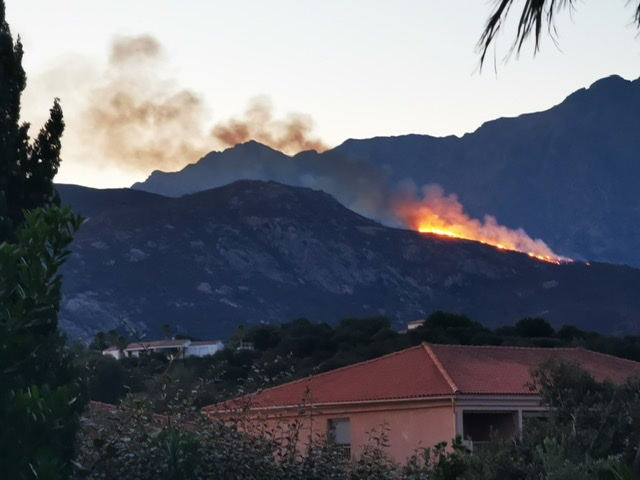 Le feu à Montegrosso (Photo Romain Guichard)