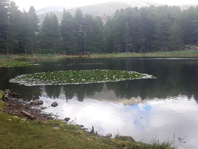 La photo du jour : dans la quiétude du lac de Creno