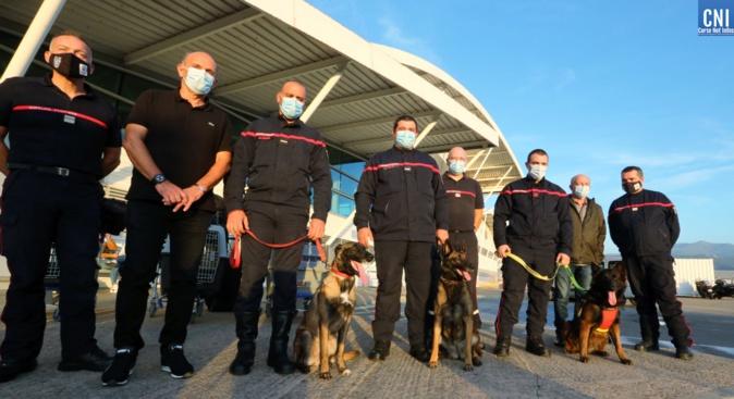 Tempête Alex : Trois chiens du SIS 2A en renfort vers les Alpes-Maritimes