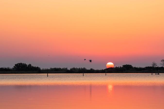 La photo du jour : l'étang de Chjurlinu un matin d'automne