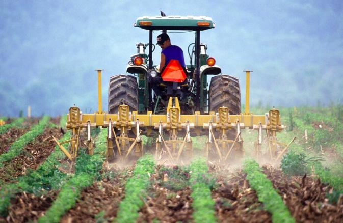 En Corse le recensement agricole démarre le 2 novembre