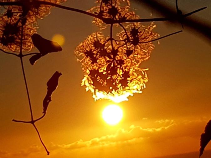 Soleil en… suspension (Photo Marité Valery)