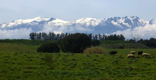 PADDUC : La nouvelle carte des Espaces stratégiques agricoles adoptée dans la polémique