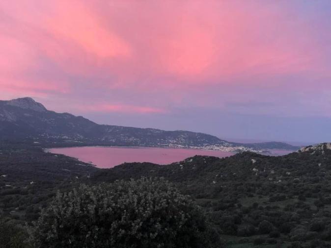 La baie de Calvi au petit matin (Denise Ruggieri)