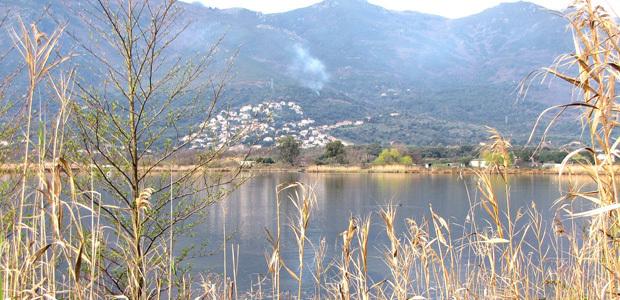 Dégradations sur le site de la réserve naturelle de Biguglia