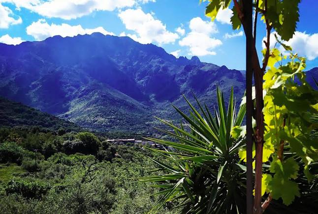 Le Monte Grosso vu de Lunghignanu (photo Clévacances Corsica)