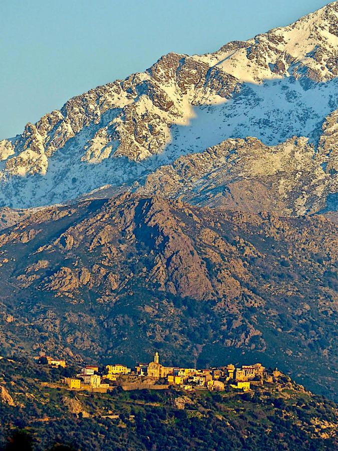 La photo du jour : Montemaiò blotti au pied du Montegrossu