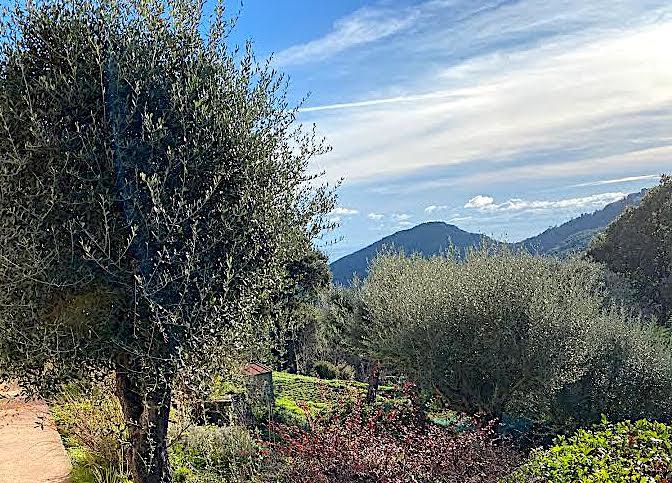 La météo du mardi 2 mars 2021 en Corse