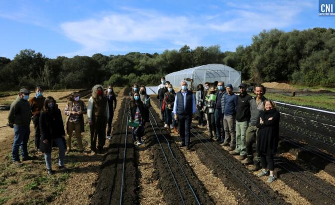 La première pépinière d'entreprise agricole de Corse, lancée par la CAPA. Photo : Michel Luccioni